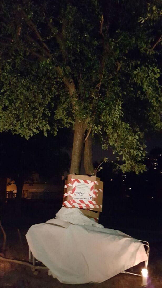 Nie chcą wycinki drzewa warszawa@tvn.pl