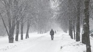 Prognoza pogody na jutro: po chłodnej nocy spadnie gęsty śnieg