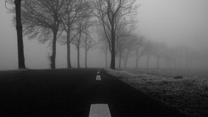 Drogi spowije gęsta mgła