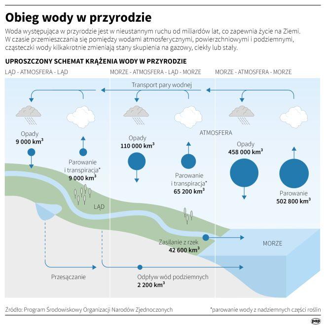 Obieg wody w przyrodzie (PAP/Maciej Zieliński, Anna Zajkowska)