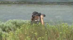 32-letni nurek zaginął u wybrzeży Australii